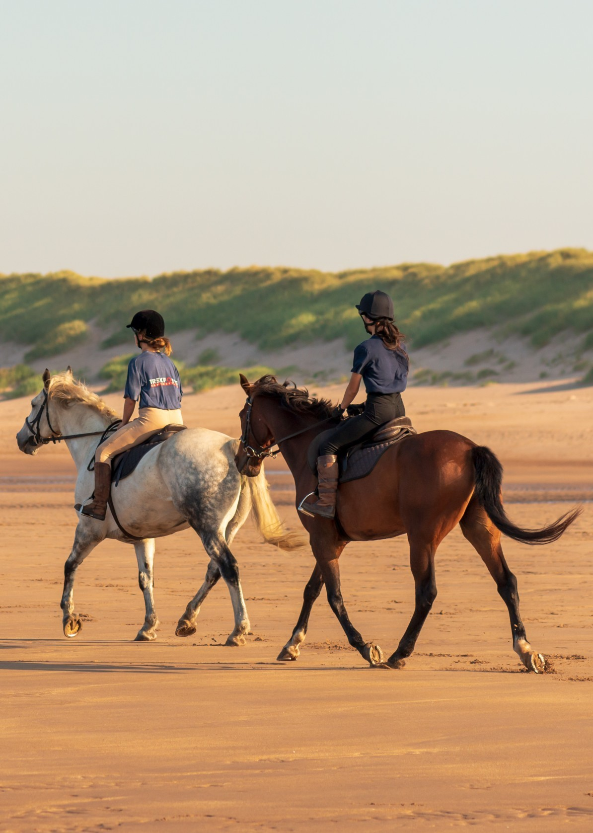 Horse Riders 9 Scaled Aspect Ratio 311x437