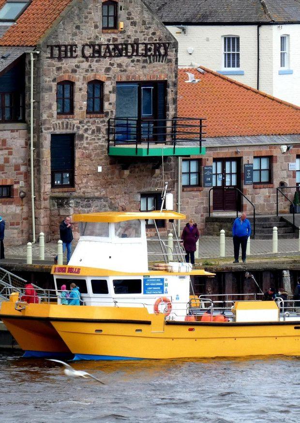 Berwick Boat Trips Aspect Ratio 310 436